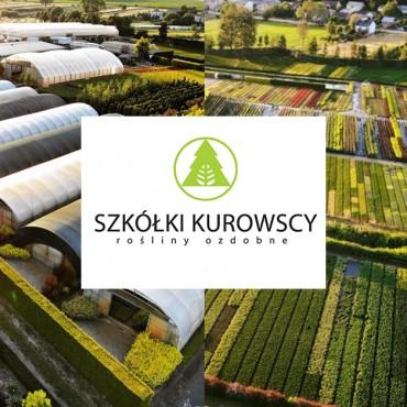 Ponownie strefę startu mety ozdobi Szkółka Kurowscy